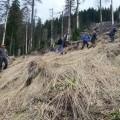 La braduti pe Valea Avrigului - 9 mai 2015